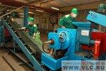 Во Владивостоке началась массовая утилизация старых шин