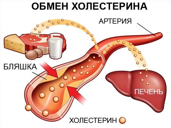 как можно снизить холестерин таблетками