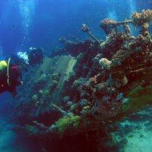 Николаевские археологи исследовали античное судно