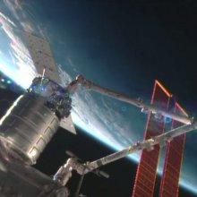 Космонавты на МКС получили подарки к Рождеству и партию муравьев