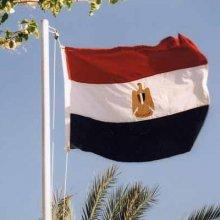 Проект новой конституции Египта был поддержан 98,1% избирателей
