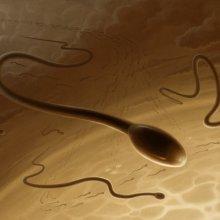 medlennie-spermatozoidi-lechatsya