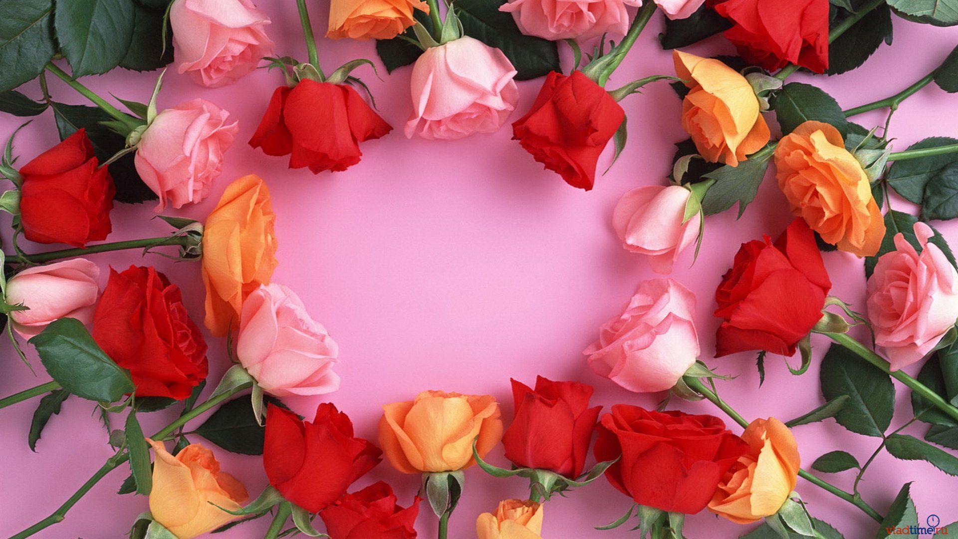 Живые цветы для поздравления