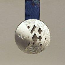 В Сочи начинаются XI зимние Паралимпийские игры