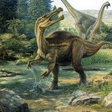 Ученые: темная материя стала причиной вымирания динозавров