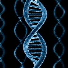 Ученным удалось исправить мутировавший ген