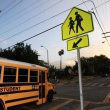 В США школьный автобус врезался в дерево, 12 человек пострадали