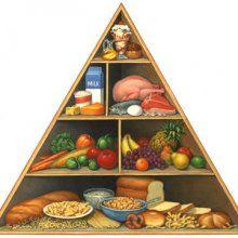 Ученые: установлен рабочий пищевой рацион