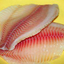 Нашу планету может спасти рыба