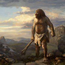Анализ фекалий неандертальцев помог изучить их рацион