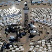 Огромная солнечная электростанция «Айванпа» убивает тысяч птиц