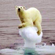 ВОЗ призывает как можно быстрее остановить изменения климата