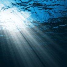 В Тихом океане слышен загадочный звук неизвестного происхождения