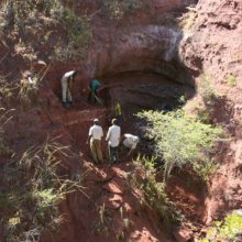 В Танзании обнаружены останки титанозавра
