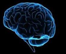 Учёные: Одновременное использование разных гаджетов плохо влияет на мозг
