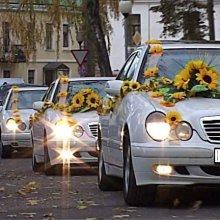 В Азербайджане в ДТП попал свадебный кортеж, погибли девятеро