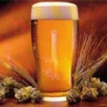 Ученые: Пиво сделает человека умным