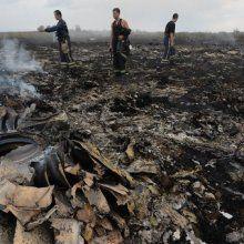 Специалисты из Нидерландов опознали ещё 6 жертв крушения «Боинга» в Украине