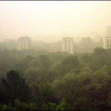 Москвичи отправляют жалобы МЧС о запахе гари