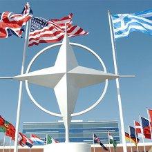 В Белом доме пока не обсуждается членство Украины в НАТО