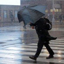 МЧС предупредило жителей Москвы об усилении ветра