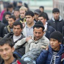 Мигрантам в России запретят работать не по профессии