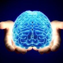 Ученые: Мозг человека работает активнее в критических ситуациях