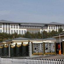 Эрдоган: Новый дворец президента пришлось построить из-за тараканов