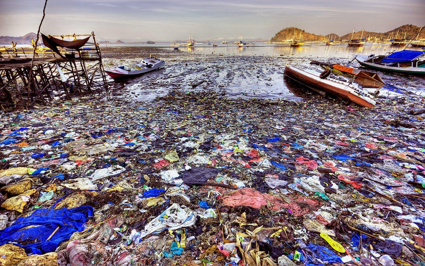 Картинки о проблемах мирового океана