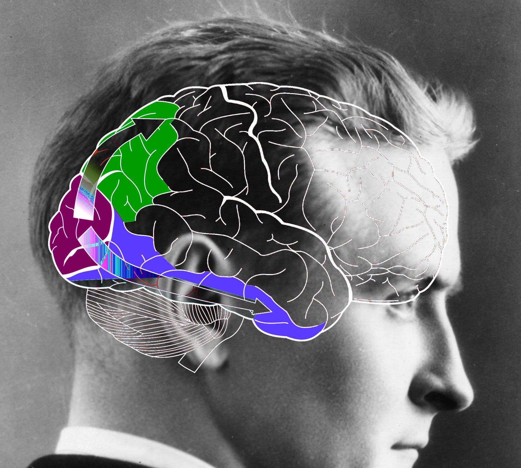 исследование восприятие человека человеком: