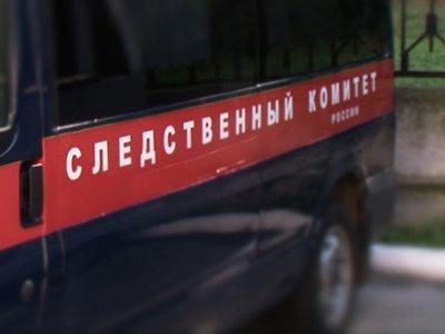 В Ижевске обнаружили труп мужчины, обглоданный собаками