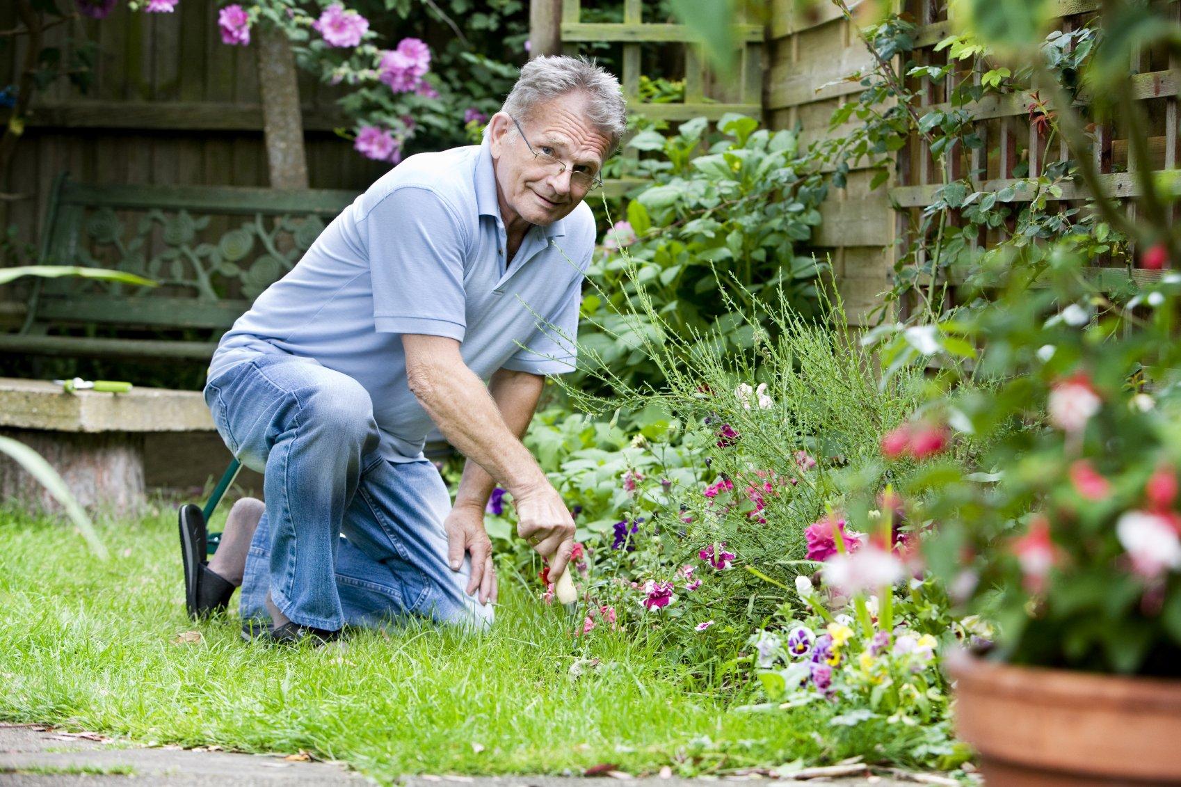 С садовником на лужайке 2 фотография