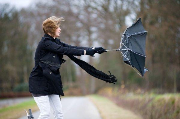 В Тверской области МЧС объявило штормовое предупреждение на ближайшие дни