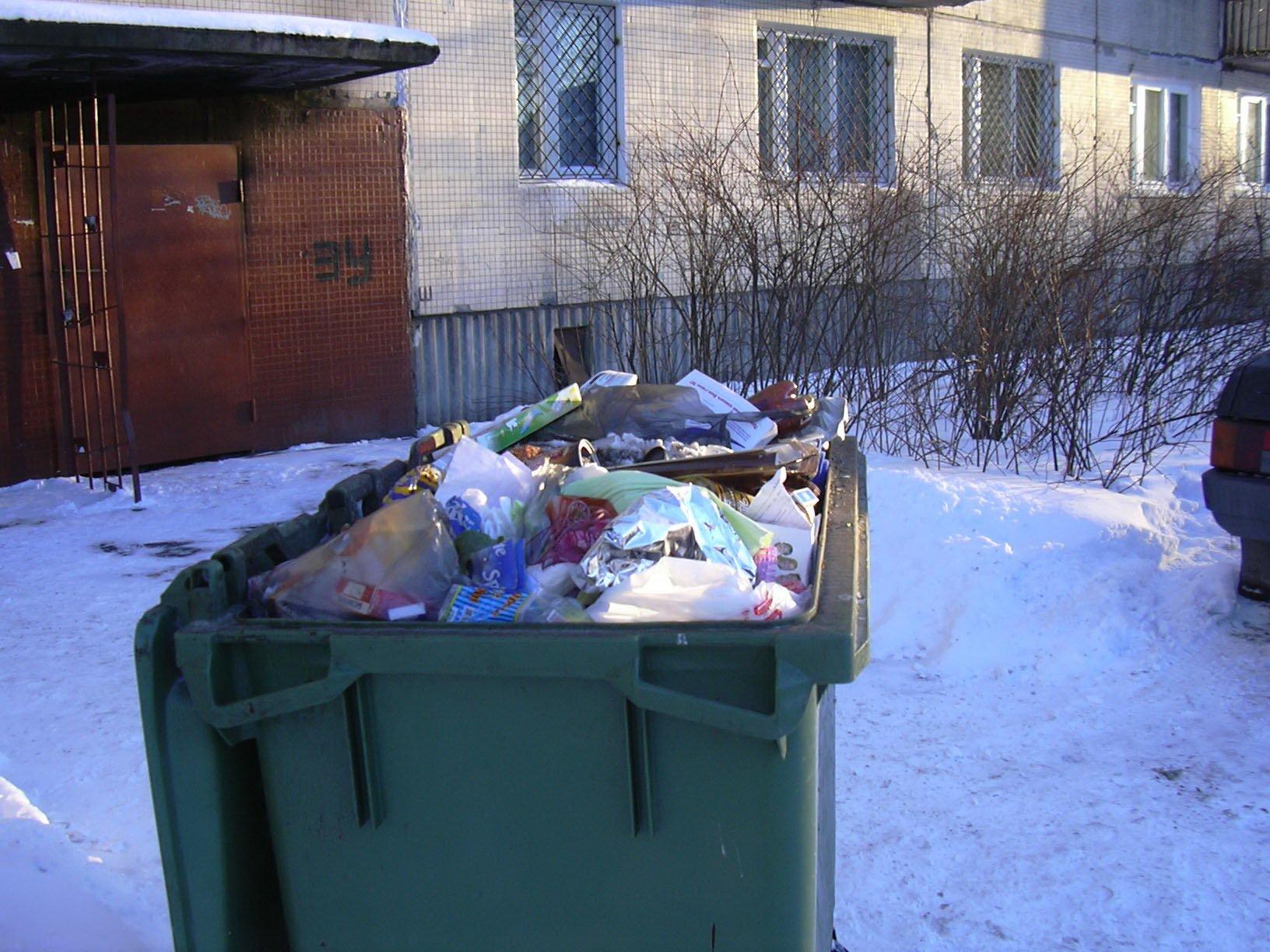 Секс у мусорного ящика 12 фотография