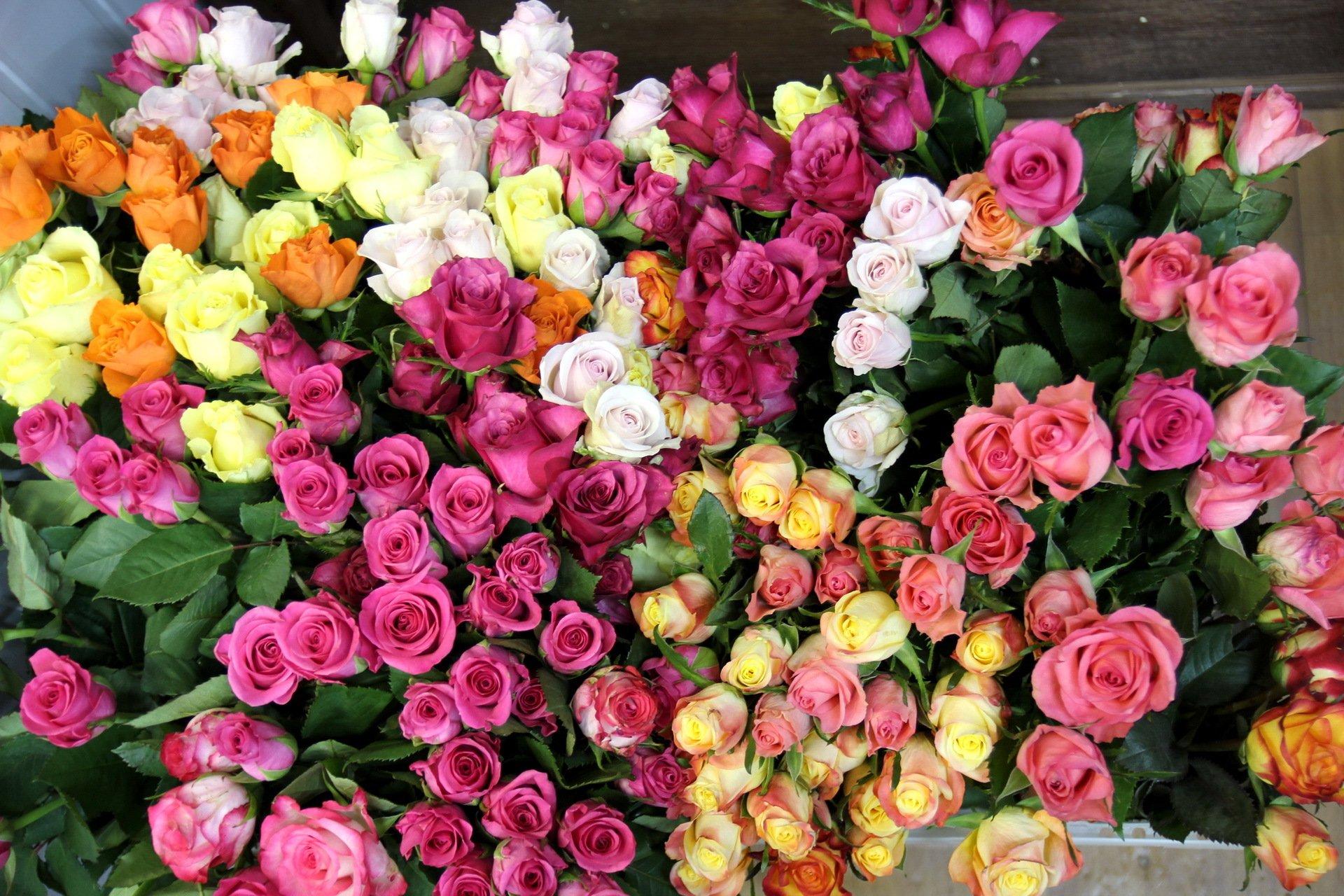 Как правильно выбрать букет цветов в подарок