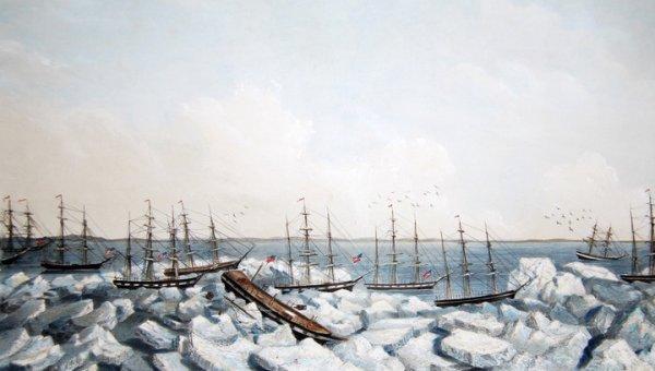 Ученые обнаружили место крупнейшей катастрофы в истории китобойного флота