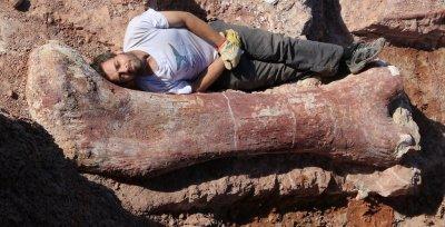 В США в музее показали титанозавра, распечатанного на 3D принтере