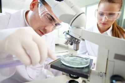Ученые разработали новый перевязочный материал на основе альгината и хитозана