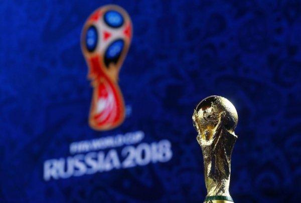 Кот, тигр и волк претендуют на звание талисмана Чемпионата мира-2018