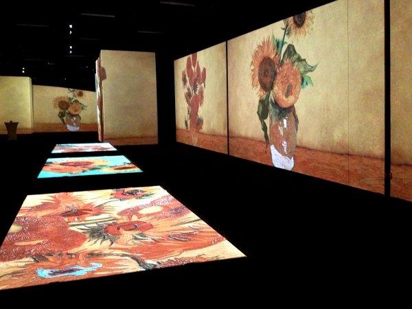 В Москве выставку Ван Гога продлили до 8 марта по просьбе посетителей