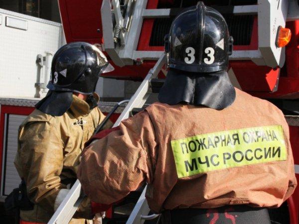 В Санкт-Петербурге из горящей квартиры спасли двух человек