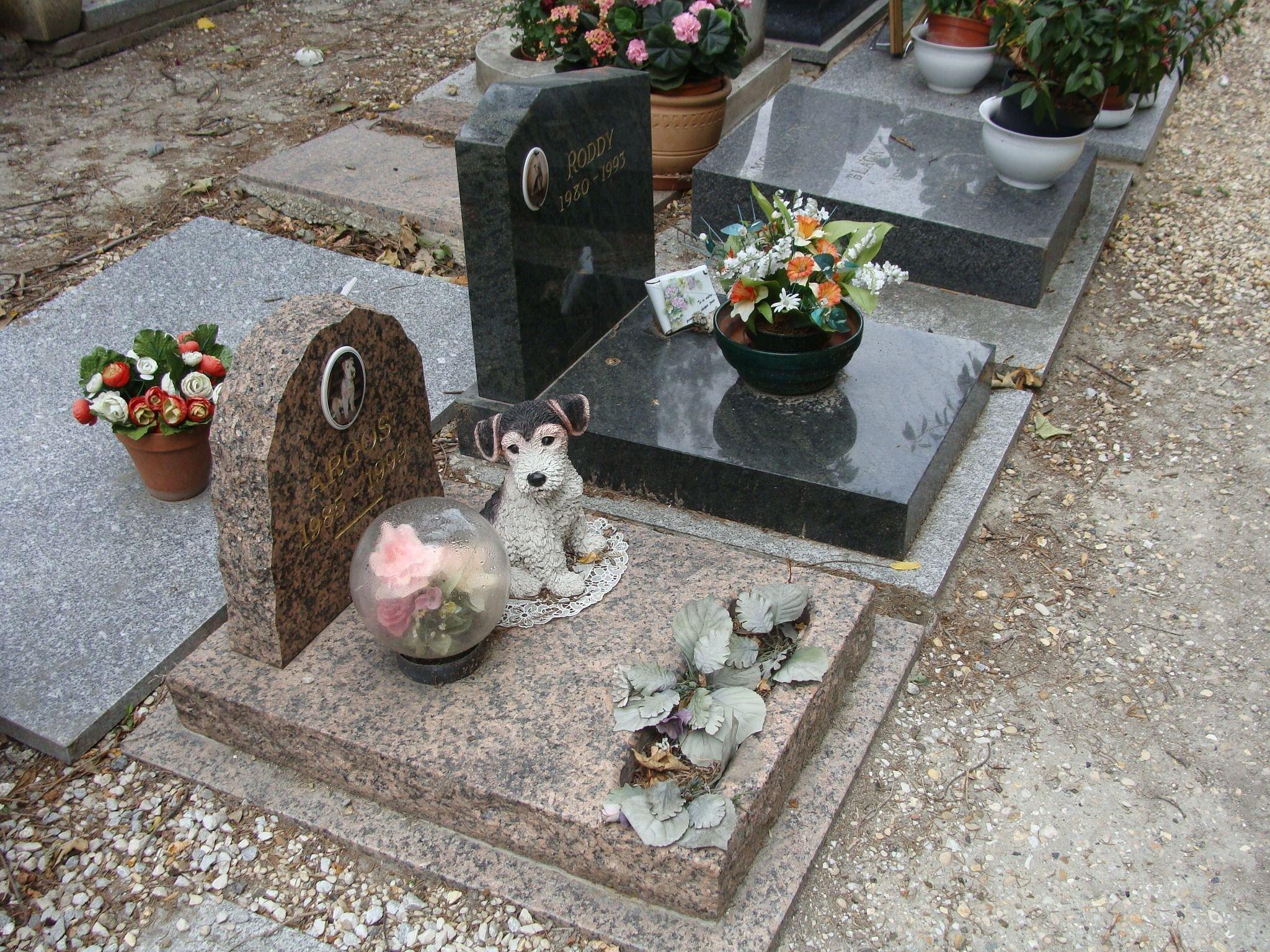 мороках том, можно ли хоронить собак на человеческом кладбище личных