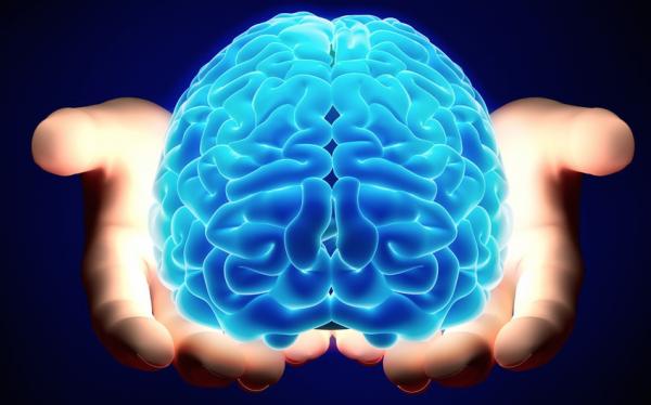 Ученые: Разные полушария мозга отвечают за обработку больших и малых чисел