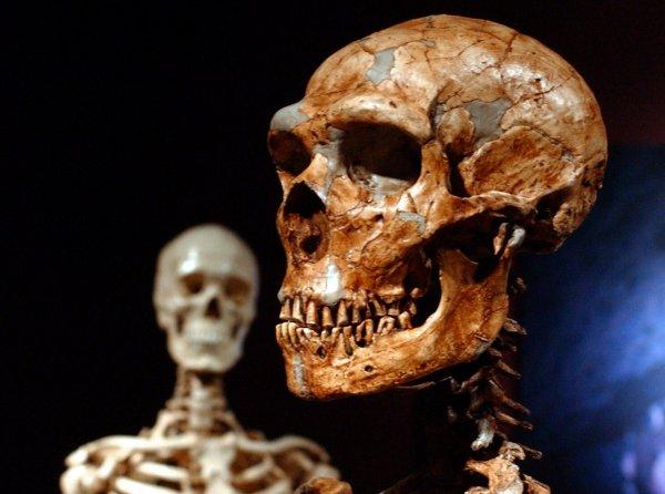 Ученые: Первые жители Европы были неандертальцами
