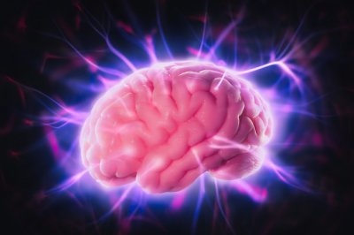 Ученые выяснили, что органы обладают «собственным сознанием»