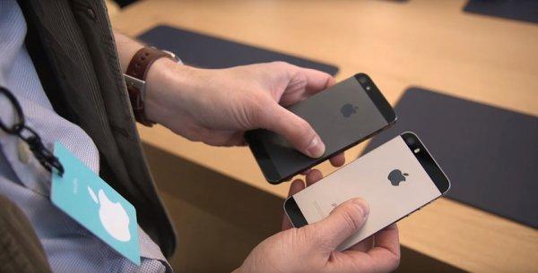 Американцы перепутали iPhone 5 с iPhone SE
