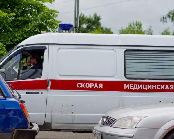 В Петербурге 5-летний мальчик разбился насмерть при падении с 11-го этажа