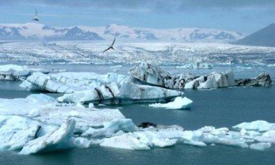 Ученые: До исторического минимума сократился ледовый покров Арктики
