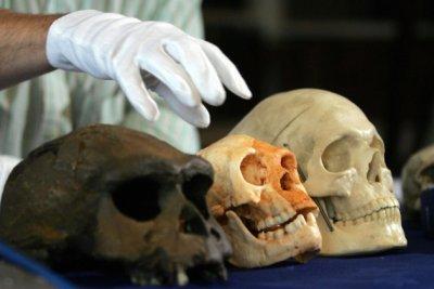 Индонезийские «хоббиты» оказались на десятки тысяч лет старше, чем считалось
