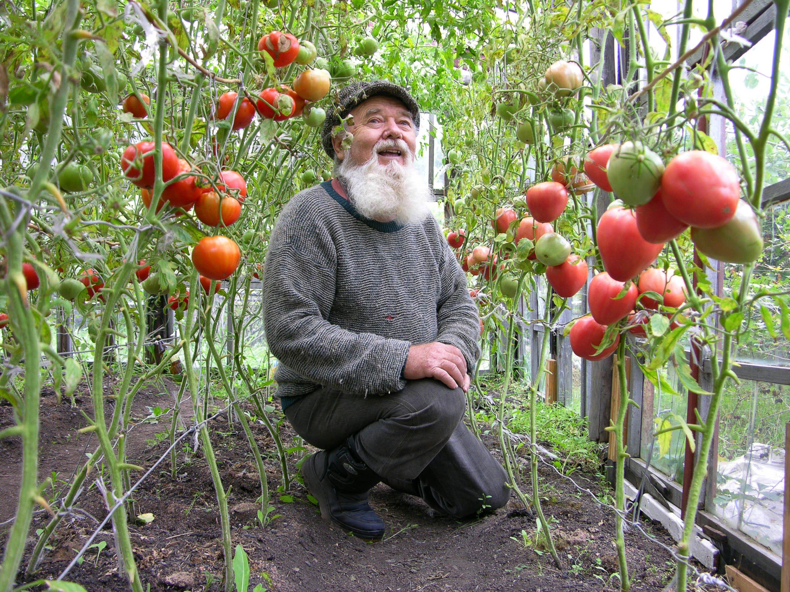 мужик зашел к женщине на огород помочь